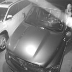 Lynn Haven Vehicle Burglary Suspects