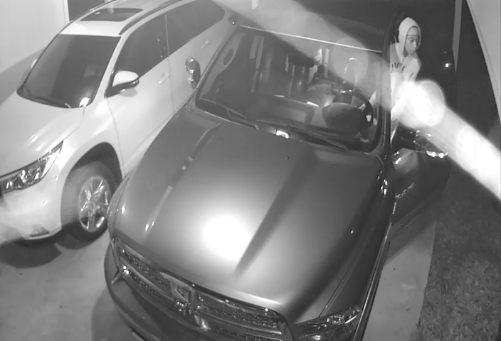 Auto Burglary Suspects