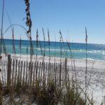 Grayton Beach State Park #4 in Dr. Beach America's Best Beaches 2017