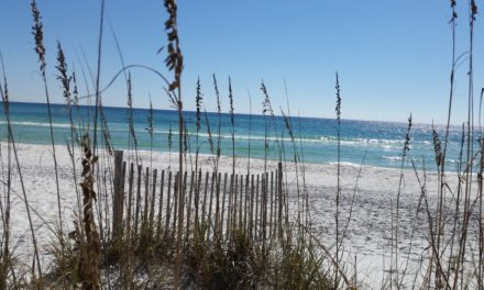 Grayton Beach State Park #4 in Dr. Beach America's Best Beaches 2017