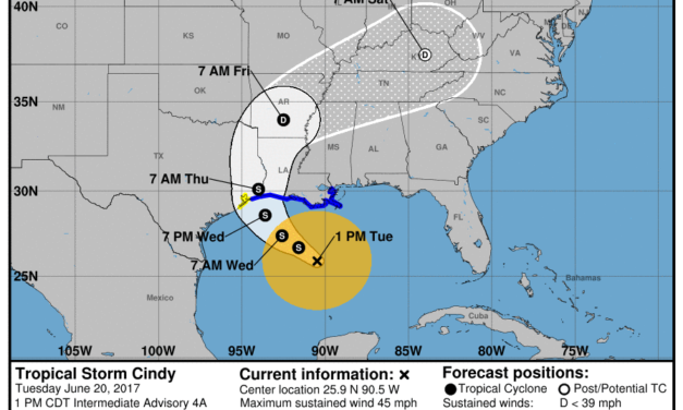 Tropical Storm Cindy forms in Gulf of Mexico